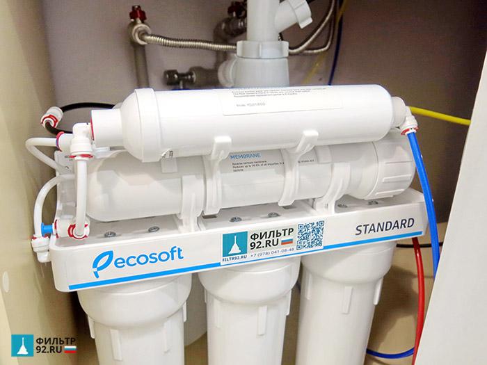 Ecosoft Standard 6-50M обратный осмос с минерализатором